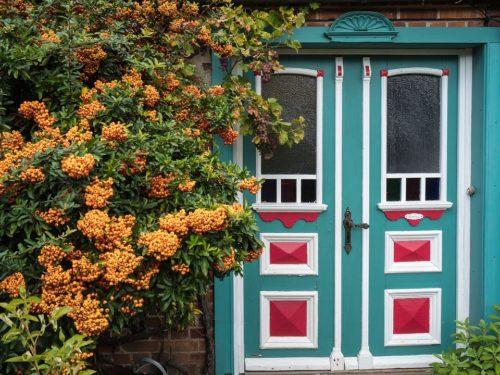 windows in the door